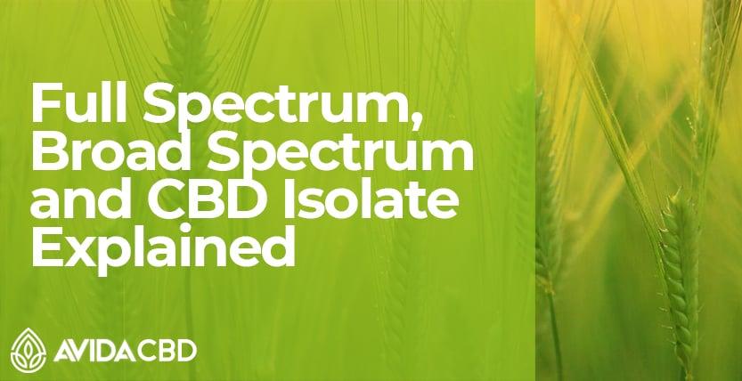 Full Spectrum, Broad Spectrum & CBD Isolate Explained